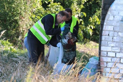 Te Szedd! – önkéntes hulladékgyűjtés Pest megyében