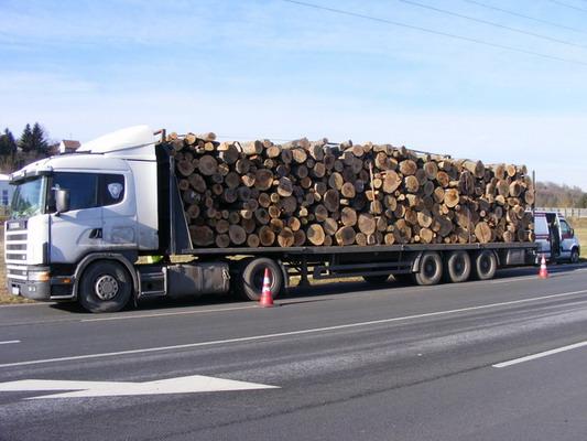 Túlsúlyos tűzifa szállítmány jogsi nélkül